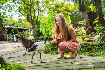 Young woman feeding an African Sacred ibis