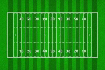 Top views of american football field. Green grass pattern for sport background. Ragby football field with white lines marking the pitch. 3d illustration