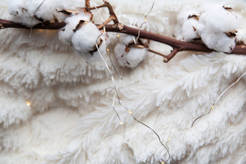 Details of still life in the home interior. Beautiful cotton flowers on a soft cozy blanket. Vintage, rustic. Cosy autumn-winter concept. Copy space