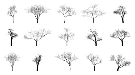 Set of black bare trees on an empty background