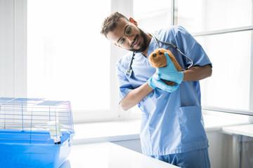 Work of veterinarian