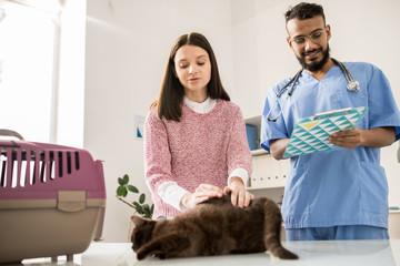 Making prescriptions for cat