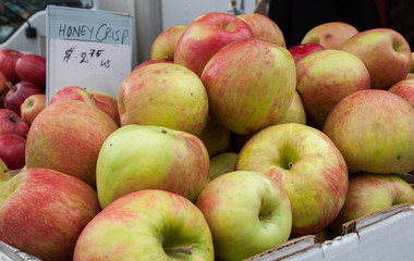 Honeycrisp apples for sale at Union Square Greenmarket. NYC. USA