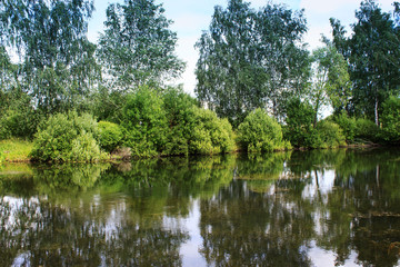 Lake image. Forest Lake. Summer landscape. The lake is surrounded by trees.