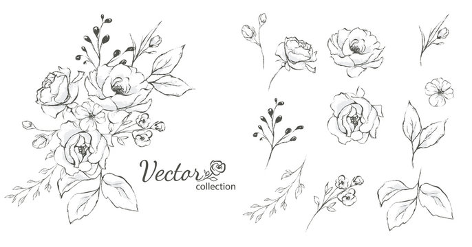 Set of floral branch. Flower rose,  leaves. Wedding concept with flowers. Floral poster, invite. Vector arrangements for greeting card or invitation design
