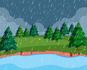 A raining scene in nature