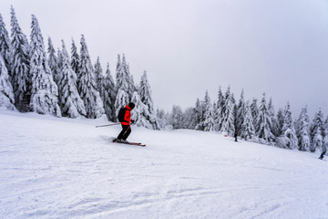 Female skier dressed in red jacket on ski slope.