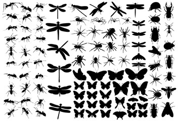 set of insects silhouettes