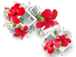 Architectural elements and hibiscus