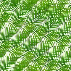 Foto op Canvas Tropische Bladeren Palm Leaf Vector Background Illustration