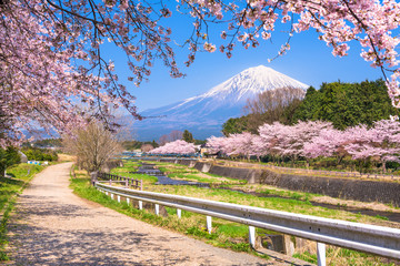 Mt. Fuji viewed from rural Shizuoka Prefecture in spring season