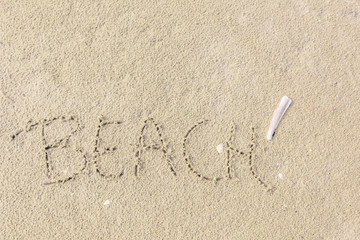 The word Beach written in the sand and razor clam lying next to it