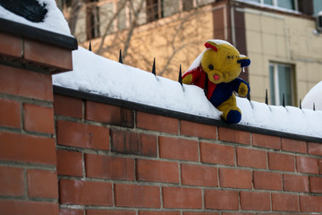 a teddy bear with one eye covered with snow is sitting on the fence.