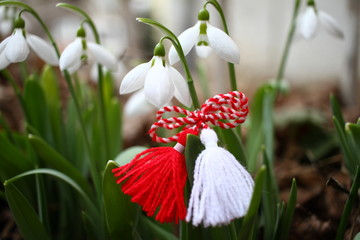 Snowdrops and martenitsa. Symbols of spring. White snowdrop flowers and martisor. Baba Marta holiday. Tradition in Bulgaria. Baba Marta Day. Wallpaper of spring flowers and martenitsa.