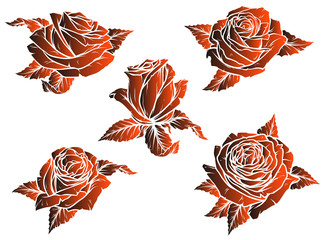 Graphic detailed stylized dark red rose flower bud with leaves. On white background. Vector icon set.