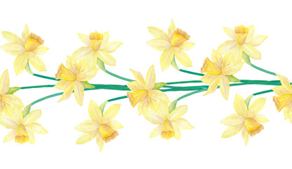 Seamless border or brush with spring flowers and leaves. Narcissus or daffodils. Hand drawn watercolor illustration. Isolated on white background.