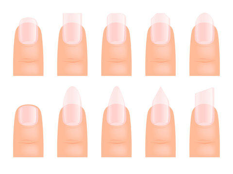 Manicure nails. Various type of fingernail art vector cartoon template. Illustration of manicure nail, fingernail hand different