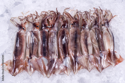 Wholesale Fish Industry to distributor retail seafood import