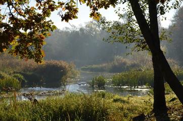 Obraz Jesienny poranek w parku, Park Wschodni, Wrocław - fototapety do salonu