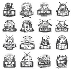 Hunting sport ammo, hunter animals trophy icons