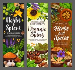 Spices, culinary herbs, cooking herbal seasonings