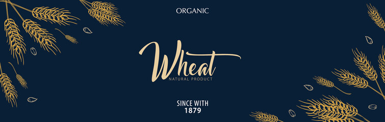 Bakery background with wheats. Linear graphic. Bread banner collection. Bread house. Vector illustration