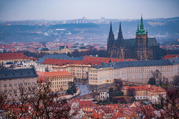 View on the red roofs of Mala Strana and St. Vitus Cathedral in Prague. Overcast weather