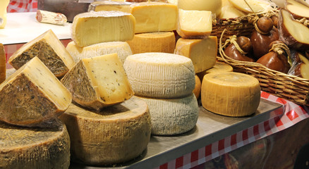 cheese for sale at market