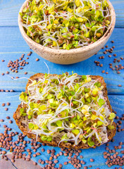 Radish sprouts as an ingredient of a healthy diet.