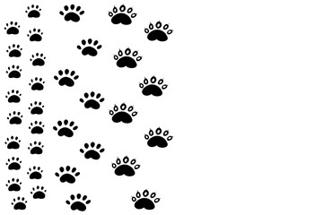 Way the Panda paw prints with five fingers. The footprints of animals comic funny.