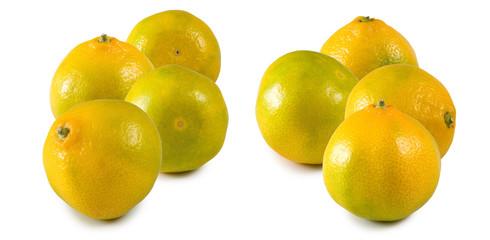 Fototapete -  image of lemon close up