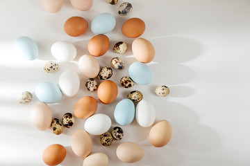 Natural Colored brown, quail and white Eggs with sunlights. Compositions in pastel colors. Easter consept.  Flat lay, top view .