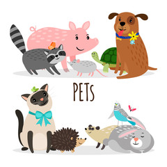 Cartoon character groups of vector pets isolated on white background. Illustration of pets animal, kitty and domestic turtle