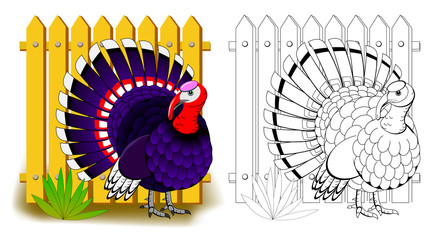 Fantasy illustration of cute turkey. Colorful and black and white page for coloring book. Printable worksheet for children and adults. Vector cartoon image.
