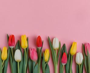 Valentine's Day background. Beautiful fresh tulips.