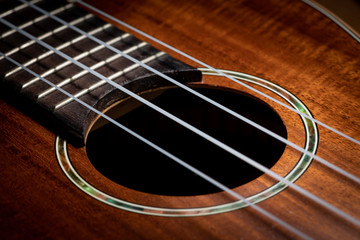 Closeup of a ukulele guitar with strings