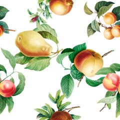 Fruit patterned background