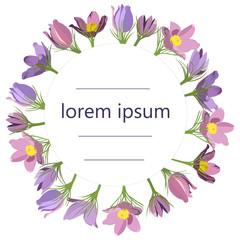 round frame of spring primroses on white background