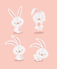 group of cute rabbits