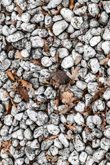 Kieselsteine und Herbstblätter