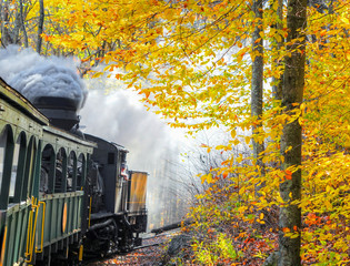 An old vintage train with thick smoke making its way through the woods in WV, with beautiful autumn colors and foliage. Shot near Cass, WV, USA.
