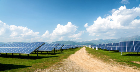 Panoramic view of solar panels, photovoltaics, alternative electricity source - concept of sustainable resources