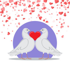 Valentine greeting card, doves symbols of love holding red heart, on background of purple circle and romantic greeting cards, vector postcard with pigeon birds