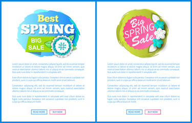 Springtime sale certificate with best prices offer. Vector web page with text sample, buttons read more and buy now. Cost reduction informative leaflets