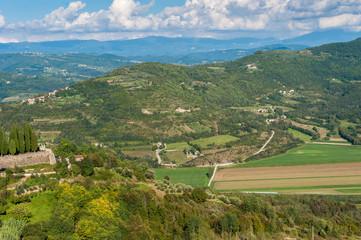 Aluminium Prints Olive Blick vin Motovun ins Tal der Mirna in Kroatien