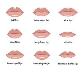 Various types of woman lips. Set of vector lips shapes. Set of illustrations with captions.