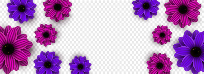 Beautiful flowers decorated on transparent background with space for your message.
