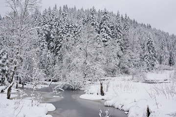 Fototapete - Partially frozen river running through a forest covered in snow
