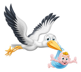 A stork or crane cartoon bird flying through the sky carrying a new born baby as in the pregnancy myth.