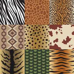 Seamless animal skin patterns set. Safari textile of Giraffe, tiger, zebra, leopard, reptile, cow, snake and jaguar background collection vector illustration.